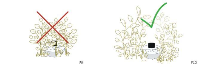 Positionnement BG-BOWL végétation